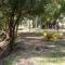 Reserva Urbana Parque Tau