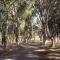 Camping Municipal de Chimbas